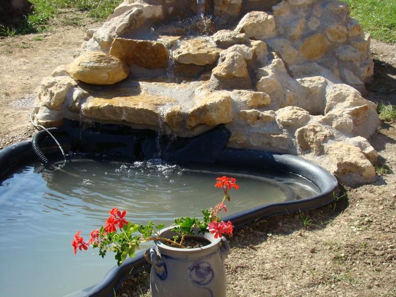Création d'un bassin Dsc03020