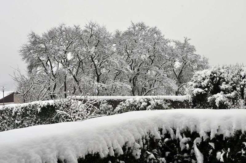 Paysages sous la neige Dsc_0236