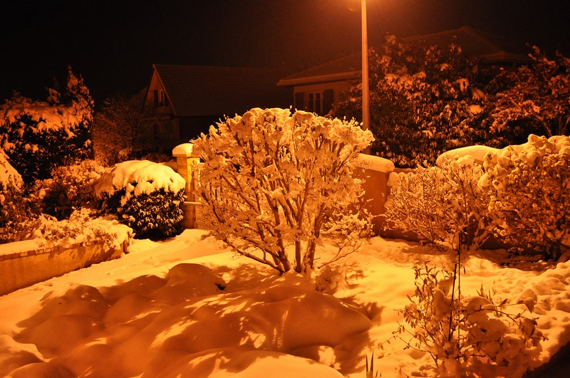 Paysages sous la neige Dsc_0243