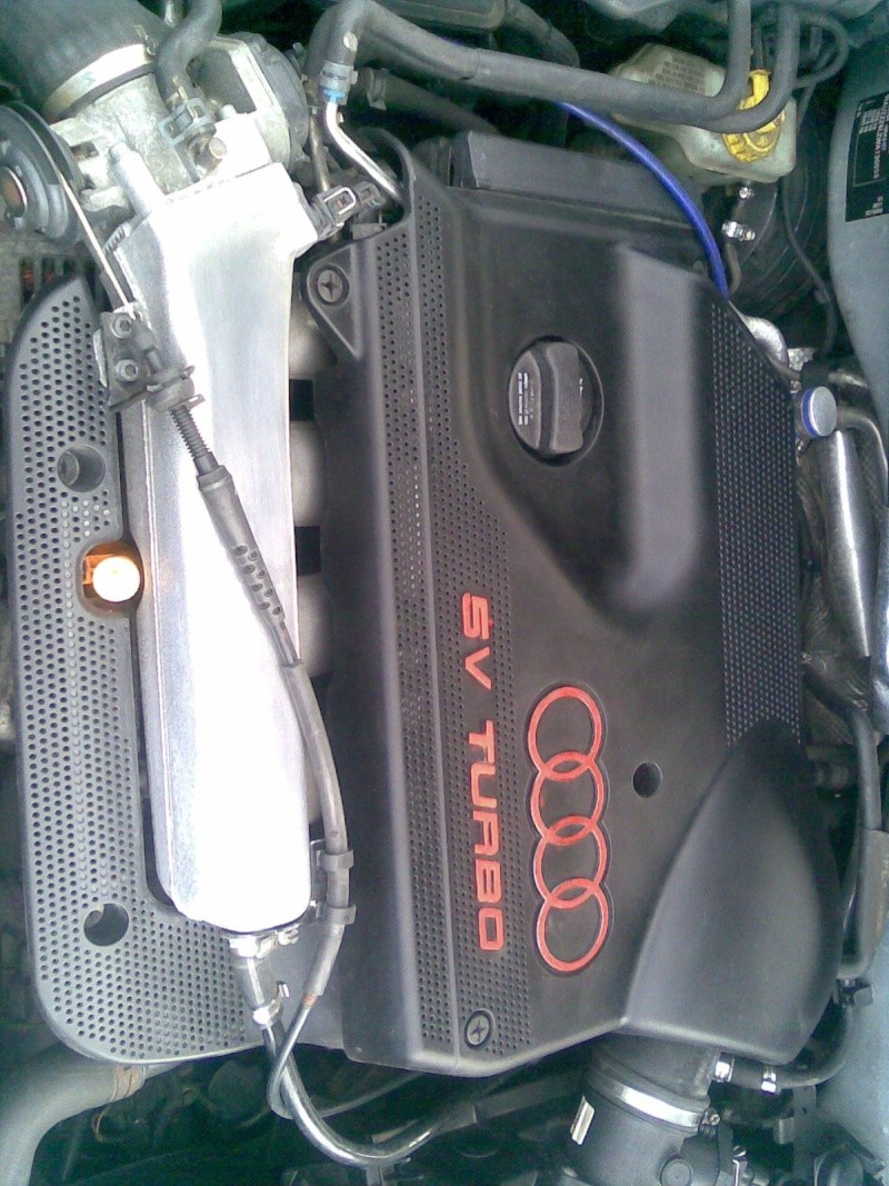 20v turbo engine bays? Image015