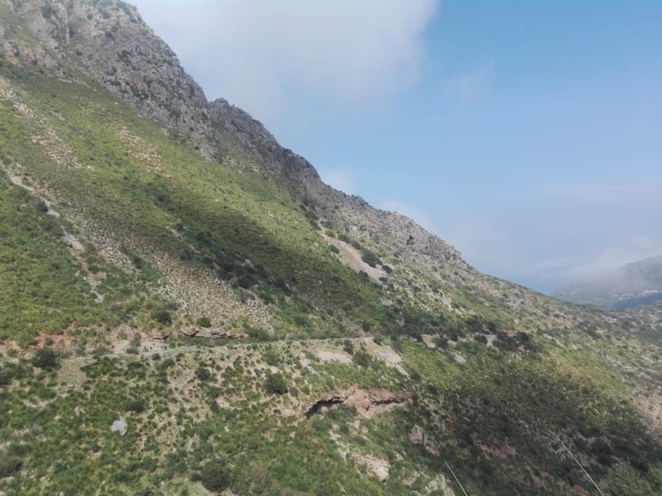 Randonnée pédestre sur les hauteurs de Ziama Mansouriah  le samedi 14 mars 2020 - Page 3 12364