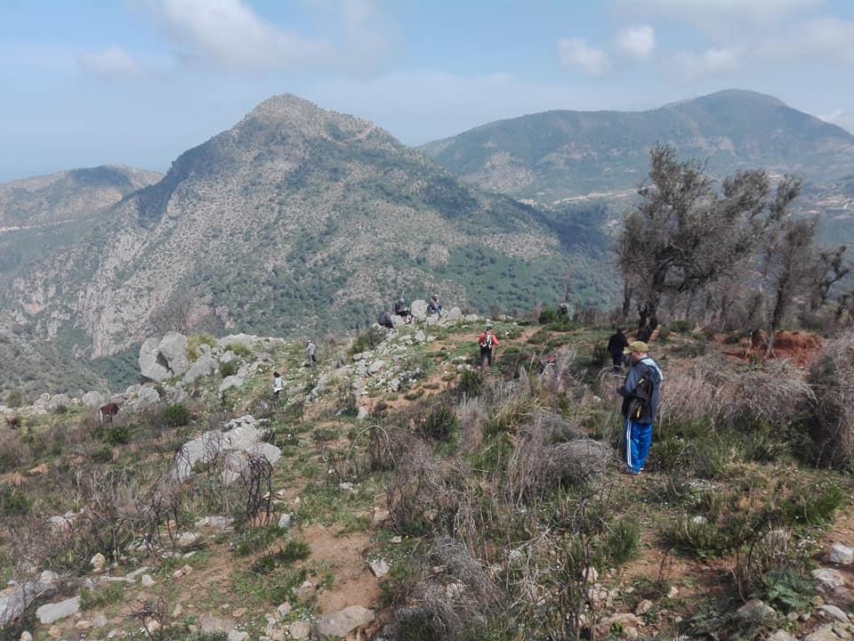 Randonnée pédestre sur les hauteurs de Ziama Mansouriah  le samedi 14 mars 2020 - Page 3 12385