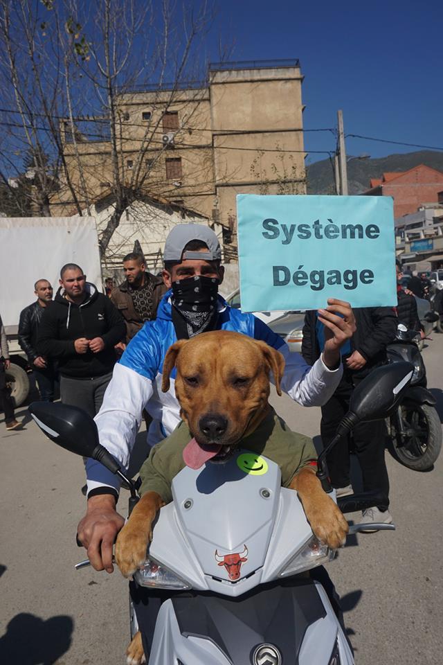 Une grandiose marche à Béjaïa le vendredi 01 mars 2019 contre le système  - Page 3 1626