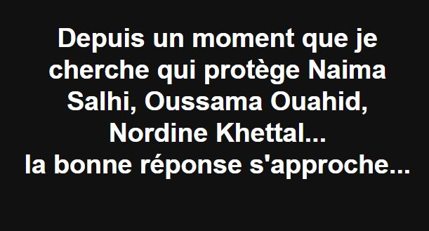 Depuis un moment que je cherche qui protège Naima Salhi, Oussama Ouahid, Nordine Khettal... 2249