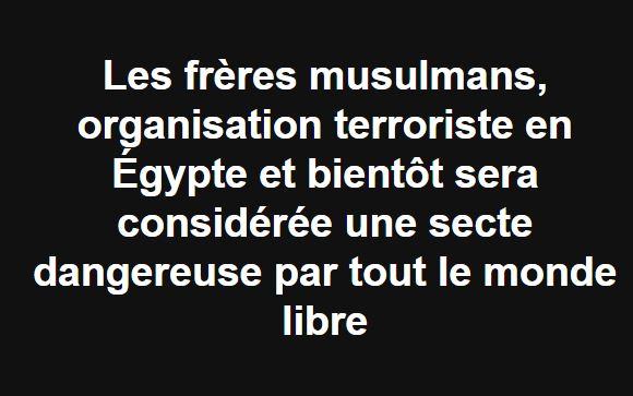 Les frères musulmans, organisation terroriste 2251
