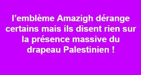 l'emblème Amazigh dérange certains  2299