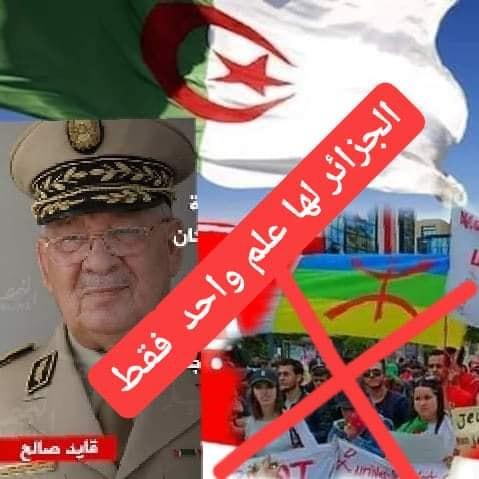 Pourquoi toute cette haine envers le drapeau Amazigh?  2534