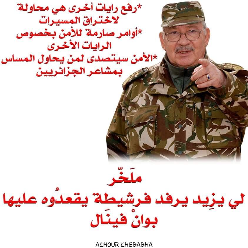 Pourquoi toute cette haine envers le drapeau Amazigh?  2535