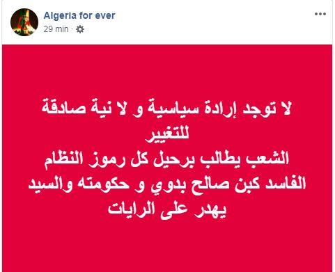 Pourquoi toute cette haine envers le drapeau Amazigh?  2548