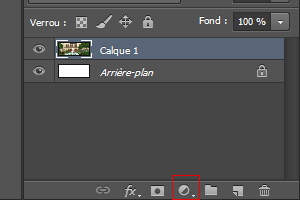 [Débutant] Premiers pas avec Photoshop Ps2110