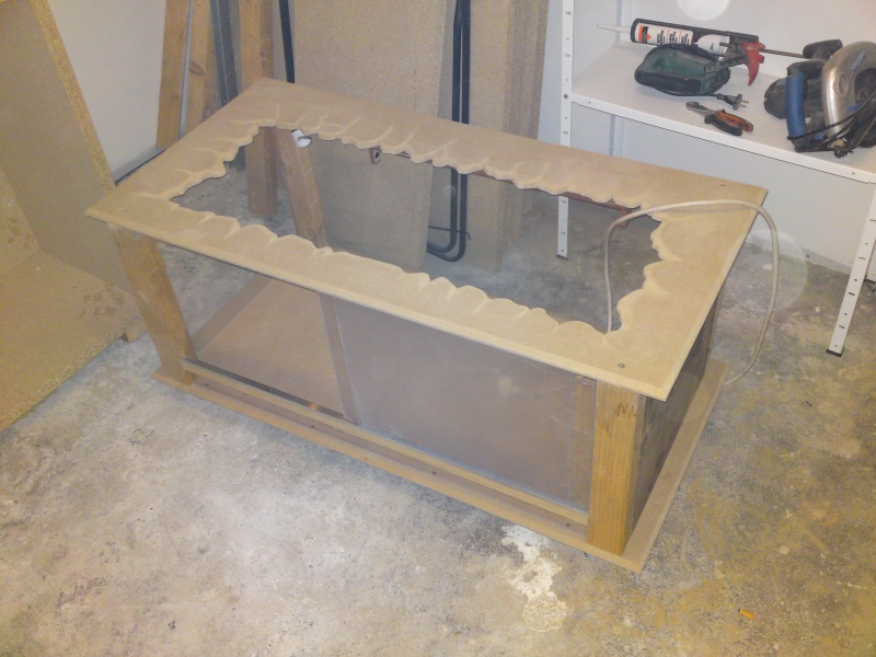 Meilleurs bois pour la construction ?  Dsc02510
