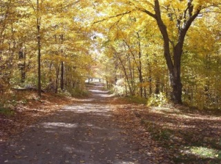 Twoleg Walking Path