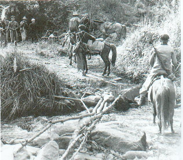 soldats des colonies Tsov_r14