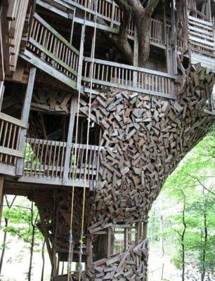 En bois ou dans les bois? Talles11