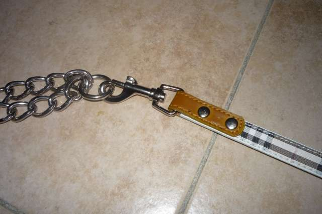 """Laisse """"Burberry's"""" neuve (synthétique) chien moyen 20points P1210439"""