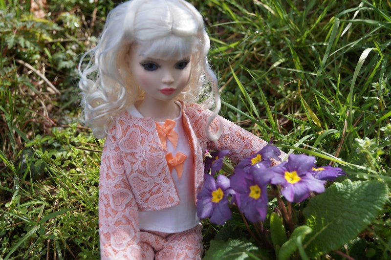 THEME DU MOIS DE MARS 2013 : le printemps, le renouveau, les balades dans la nature - Page 3 Dsc01225