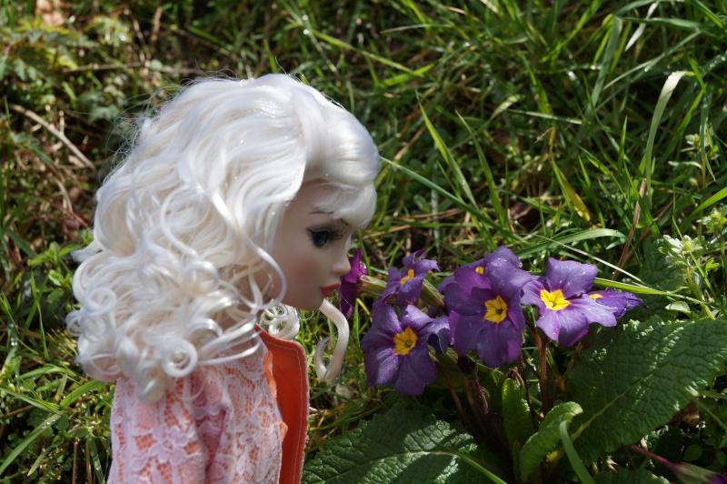 THEME DU MOIS DE MARS 2013 : le printemps, le renouveau, les balades dans la nature - Page 3 Dsc01226