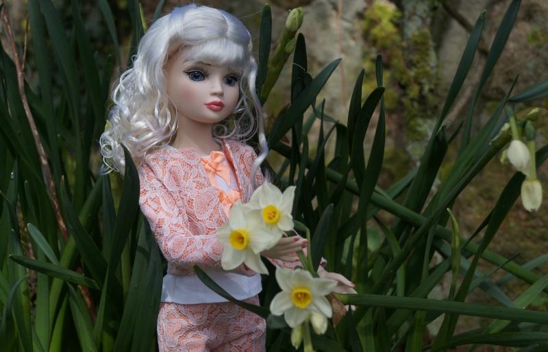 THEME DU MOIS DE MARS 2013 : le printemps, le renouveau, les balades dans la nature - Page 3 Dsc01227