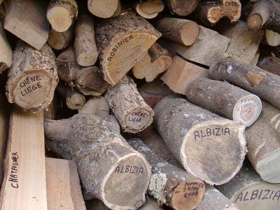 [Réalisation] Un séchoir à bois - Page 7 Boisra11