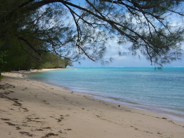 Concours Photo semaine du 12 Avril au 19 Avril Théme lettre O Tahiti24