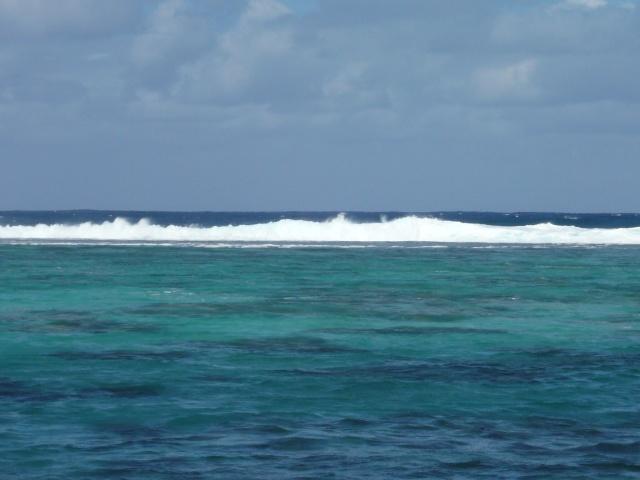 concours de la semaine du 25 au 30 mai 2010 Tahiti29