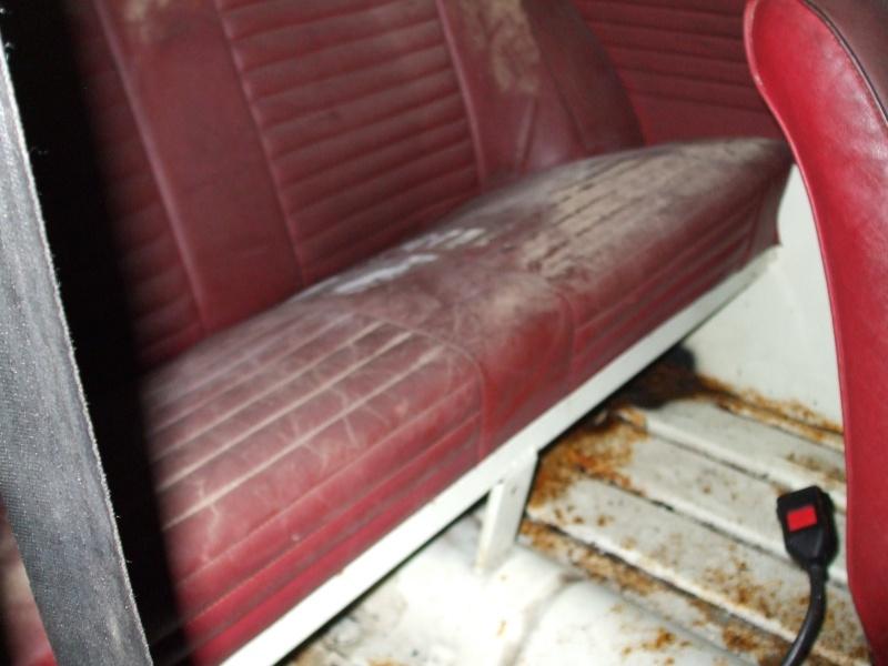 Winnie Hornet Restoration 27710