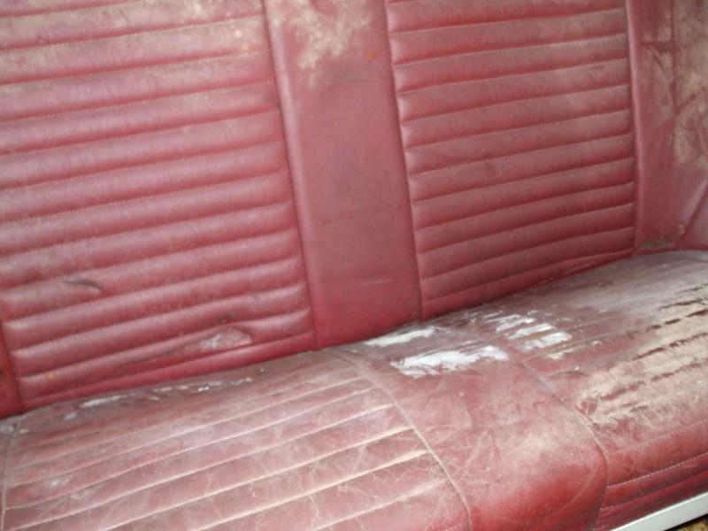 Winnie Hornet Restoration 27810