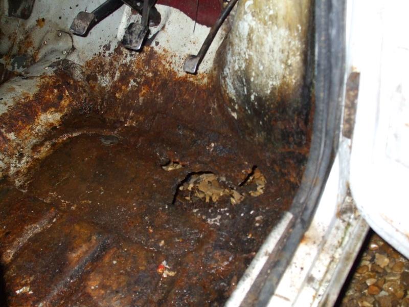 Winnie Hornet Restoration 28710