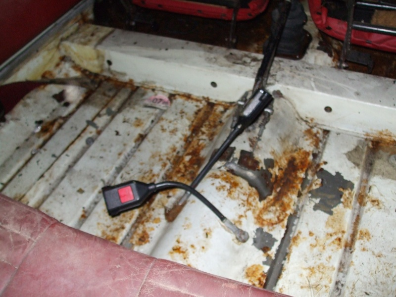 Winnie Hornet Restoration 29711