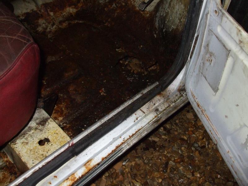 Winnie Hornet Restoration 30810