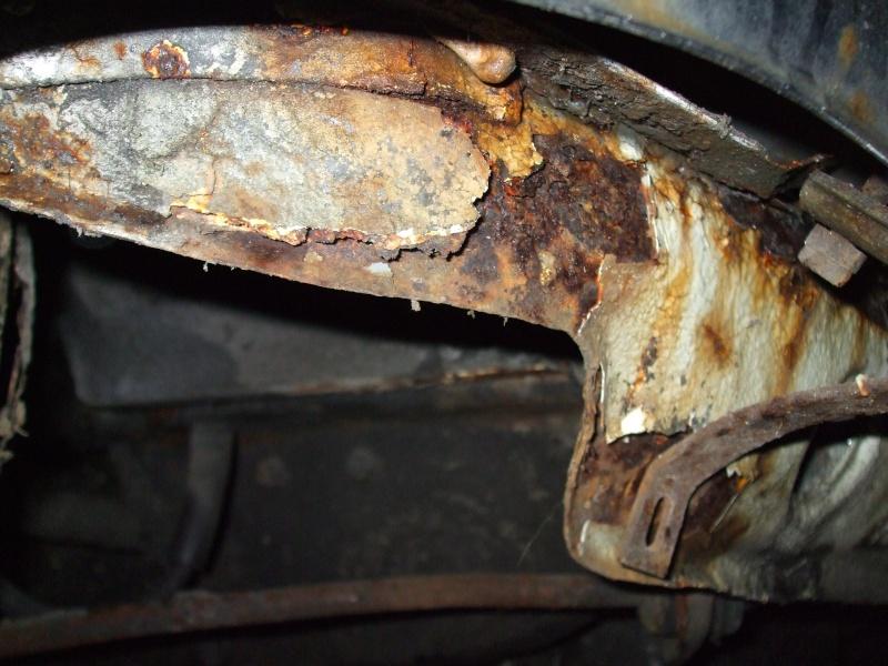 Winnie Hornet Restoration 31610
