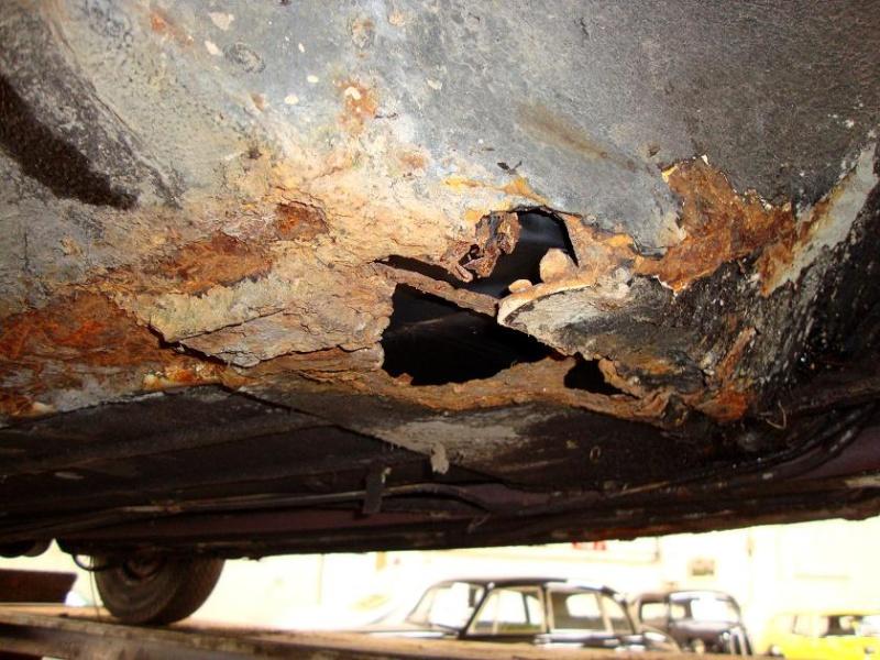 Winnie Hornet Restoration Driver10
