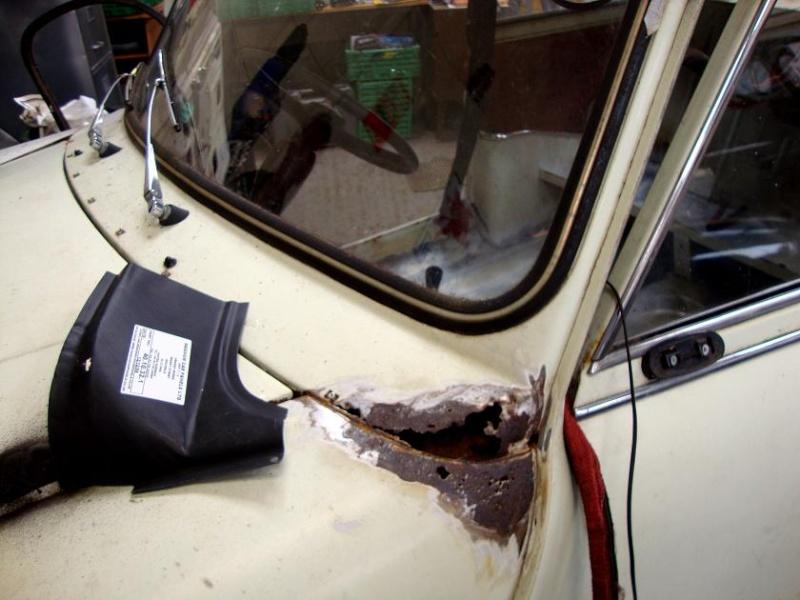 Winnie Hornet Restoration Left-w10