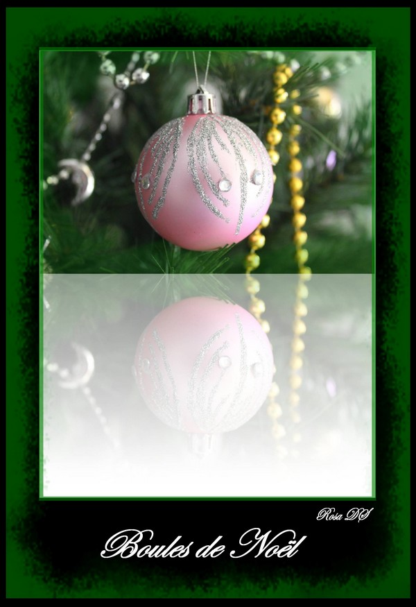 Concours photo du mois de décembre 2010. Thème : Féerie de Noël 610