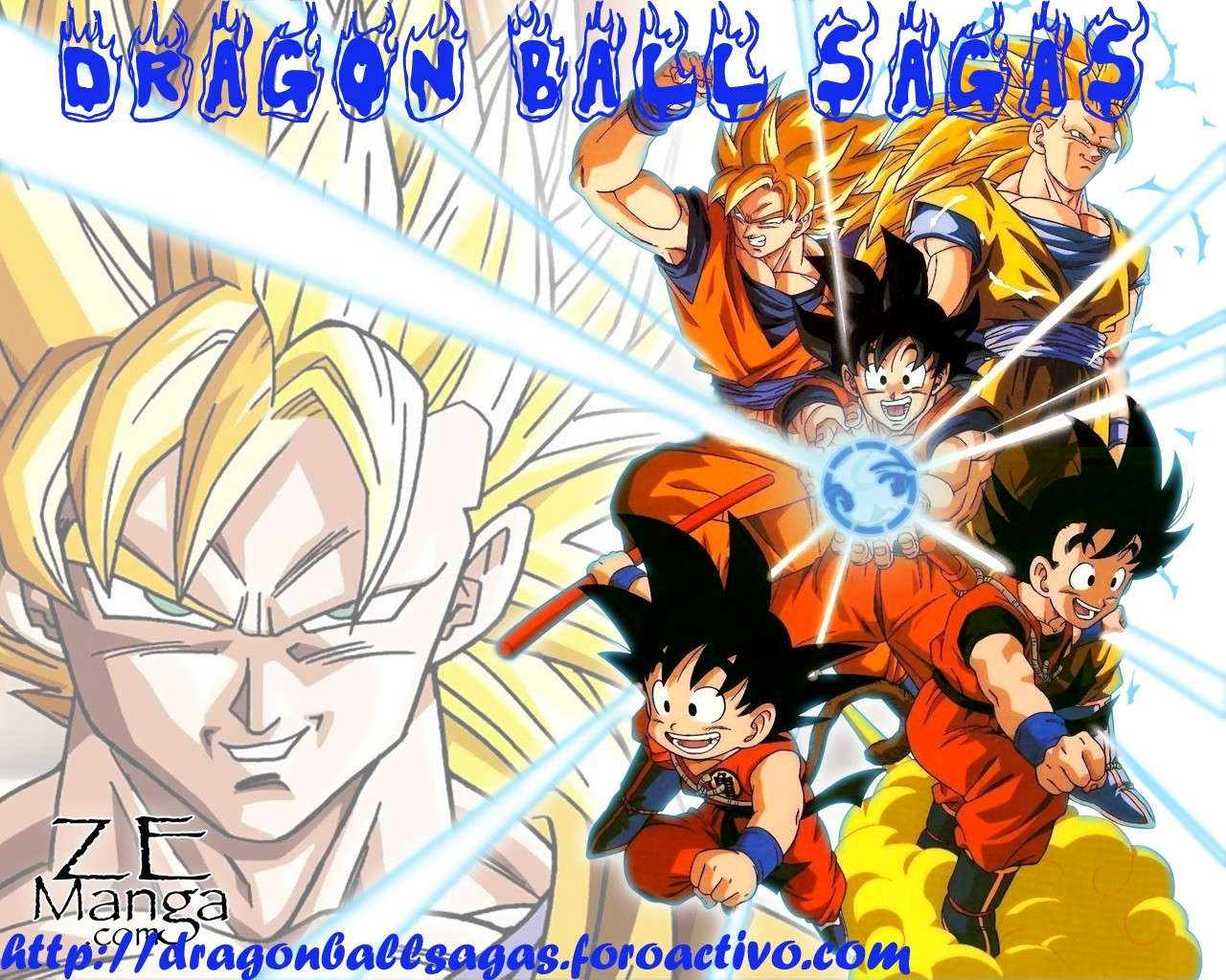 Dragon Ball Sagas rol