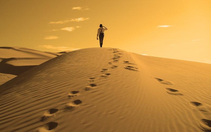 6 HEURES DE SILVERSTONE Desert10
