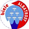 Virtuální Akrobatické Skupiny Logo-b10