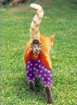 Gambar - Gambar Binatang Tergokil di Dunia Internet! 3_badu11