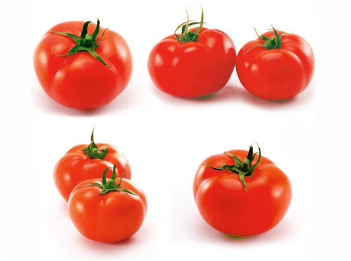 Como hacer extracto de tomate? Tomate10