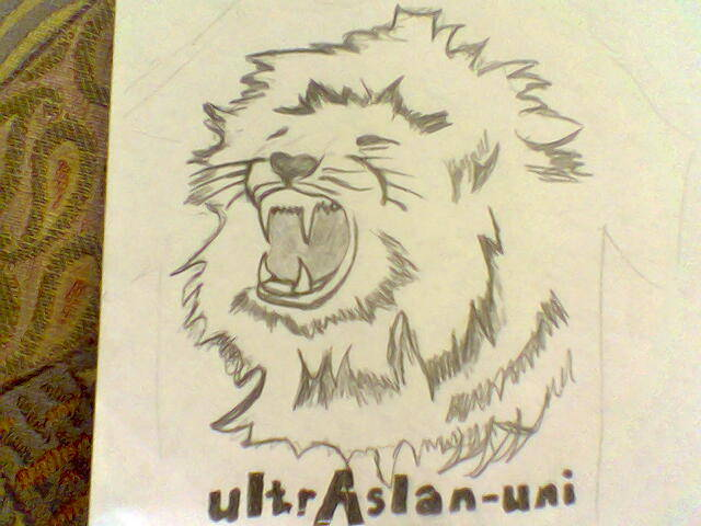 Dessins ultras Ultras14