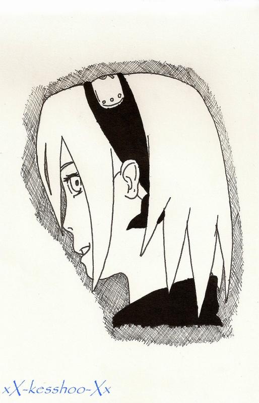 du noir au blanc Saku_10