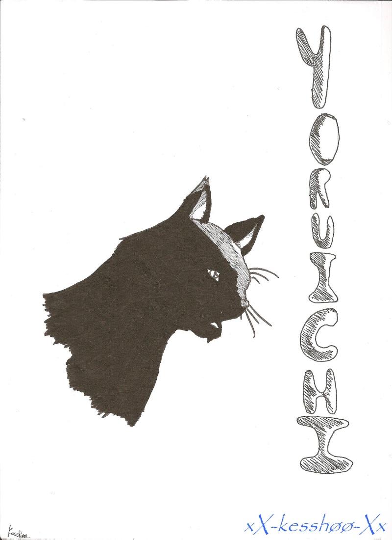 du noir au blanc Yoruic10