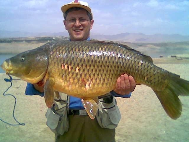 سبحان الله في خلقه Fishin10