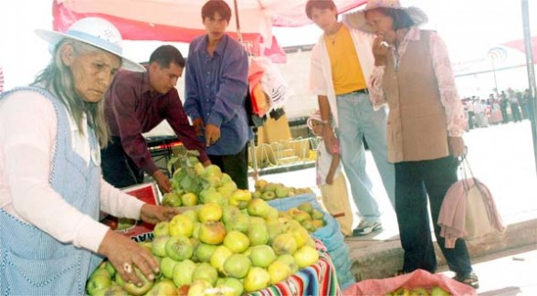 Sugieren industrializar su producción frutícola Feria_10