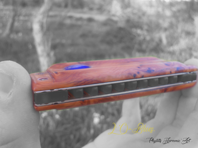 L'O-BLUES. 115
