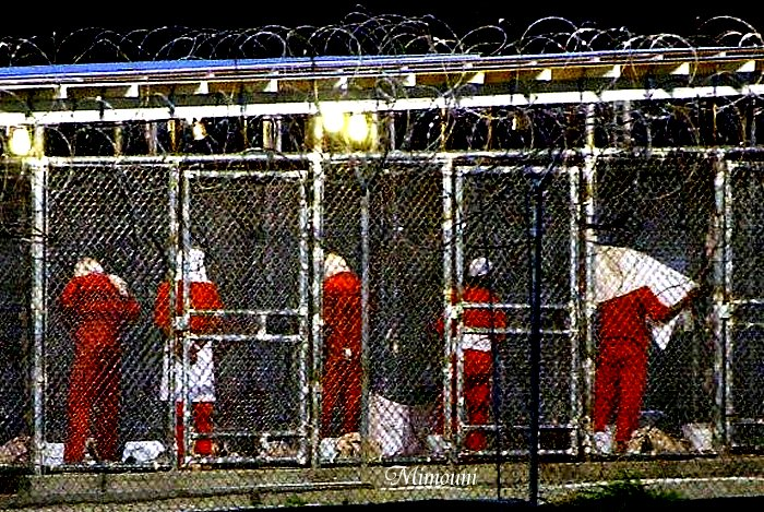 حقوق الإنسان في أمريكا عبارة عن منجم دائم Mimoun24