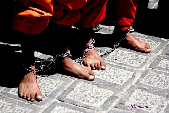 حقوق الإنسان في أمريكا عبارة عن منجم دائم Mimoun26