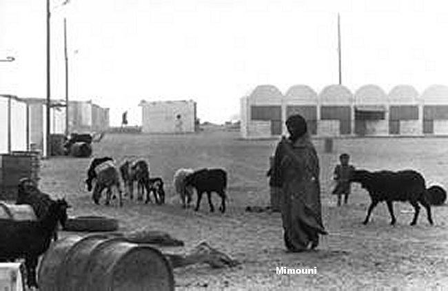 Le Maroc riposte aux effets pervers Americains Mimoun34