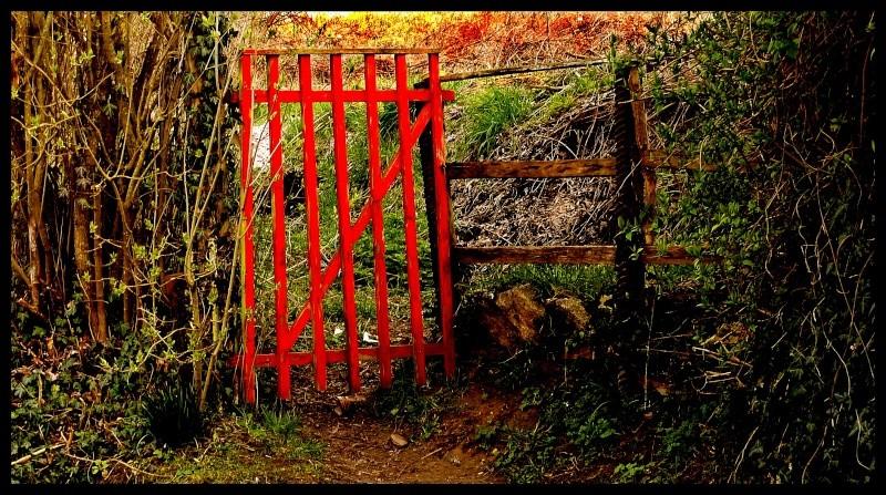 La porte des champs P1060612