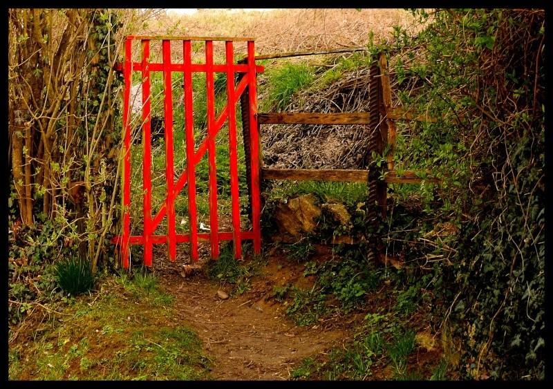 La porte des champs P1060613